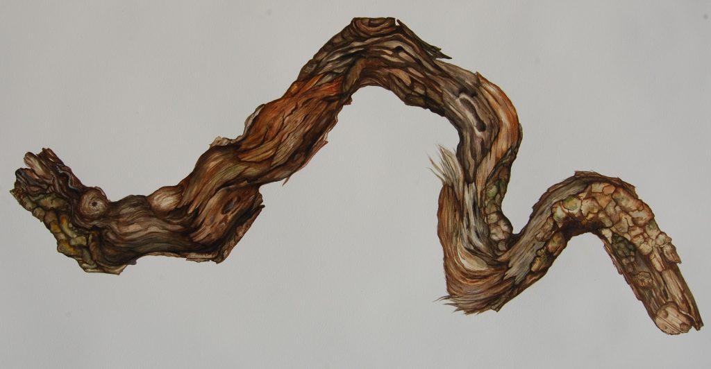 Ausstellung Holzbildnisse