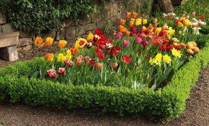 Renaissance Garten
